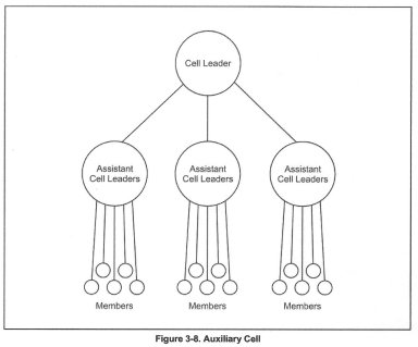 Auxiliary Cell Organization