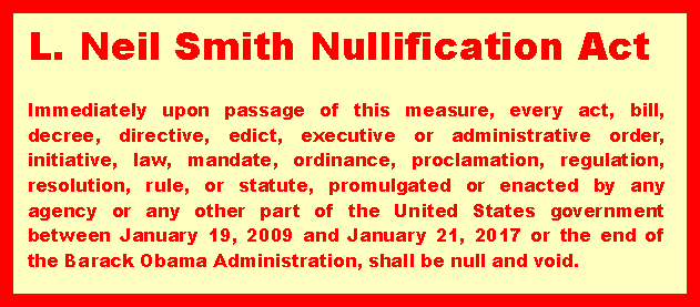 Nullification Act