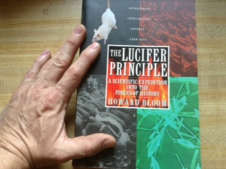 The Lucifer Principle book