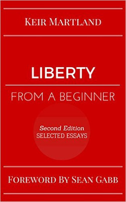 Liberty from a Beginner cover