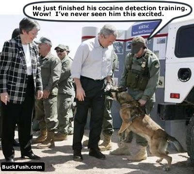 George and Drug Dog